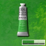 WINTON OIL COLOUR 37 ml.
