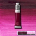 WINTON OIL COLOUR 200 ml.