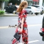Lady Ribbon Online เสื้อผ้าออนไลน์ขายส่ง Normal Ally เสื้อผ้า,NA06220816 &#x1F389Normal Ally Present D&G Apple Summer casual set&#x1F389 (เสื้อ + กางเกง) thumbnail 5