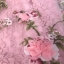 ผ้าออกัลซ่าแต่งดอกไม้ 3D thumbnail 7