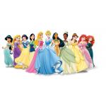 Disney Princess rings แหวน เจ้าหญิงดิสนีย์