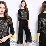 Daisy Premium Collection Lace