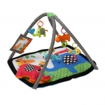 Grows with baby Activity Gym & Foam Mat