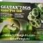 Glutax 75 gs thumbnail 1