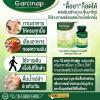 เน้นลดหน้าท้อง (ลดพุง) ด้วย 4 ขั้นตอนคู่กับการทานอาหารเสริมลดน้ำหนัก Garcinap