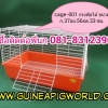 กรง Cage-001