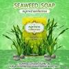 Seaweed Soap สบู่สาหร่ายเกลียวทอง 80g