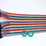 Jump Wire (Male to Female) ยาว 20cm. จำนวน 40 เส้น