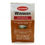 Windsor Ale 11 g.