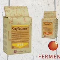 Fermentis 500 gram (Pre Order)