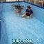 สระว่ายน้ำสำเร็จรูป Size 15 ฟุต thumbnail 2