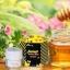 Forest Honey Bee Cream by B'secret ครีมน้ำผึ้งป่า ศาสตร์แห่งการฟื้นฟูบำรุงผิวที่ดีที่สุด thumbnail 6