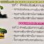 โช้คหลัง GAZI รุ่น HYPER X HONDA PCX PCX125 PCX150 ALL NEW 2014 N-MAX AIRBLADE โช้คแต่ง แก๊ส กระปุกบน เนื้องานอลูมิเนียม ความยาว 320mm ปรับความสูงได้ ปรับค่าสปริงได้ thumbnail 9