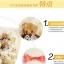ช่อตุ๊กตาหมีสีครีม-น้ำตาล thumbnail 6