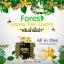 Forest Honey Bee Cream by B'secret ครีมน้ำผึ้งป่า ศาสตร์แห่งการฟื้นฟูบำรุงผิวที่ดีที่สุด thumbnail 4