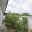บ้านเดี่ยวชั้นเดียว ต.บ้านบึง อ.บ้านบึง จ.ชลบุรี thumbnail 15