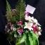 Flower-Hanabana ใหญ่ thumbnail 3