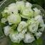 ช่อดอกไม้ E004 thumbnail 1