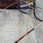 Paul Hueman 177D Col .04 โปรโมชั่น กรอบแว่นตาพร้อมเลนส์ HOYA ราคา 3,200 บาท thumbnail 4