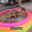 สระว่ายน้ำเป่าลม Intex (6 ฟุต) thumbnail 5