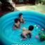 สระว่ายน้ำเป่าลม Intex (6 ฟุต) thumbnail 13