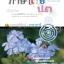 สรุป เฉลย เก็ง ภาษาไทย ป.3 thumbnail 1