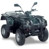 CD Spare Parts Book ATV ADLY ATV-150U(215A) UTILITAIRE 2004 (EN)