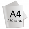 กระดาษอาร์ตการ์ดมัน 1 หน้า 250 แกรม/A4 (500 แผ่น)