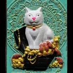 หนูดูดนมแมว เพ้นสี หลวงปู่ถ้า อนาลโย