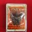 พญาครุฑกำราบศัตรูพ่าย เนื้อทองแดงผิวรุ้ง หลวงปู่ดี วัดมะขามแดง thumbnail 2