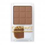 Canmake Shading Powder #01 Danish Brown