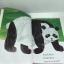 Brown bear and friends book gift set 4 เล่ม ปกอ่อน thumbnail 13