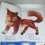 Brown bear and friends book gift set 4 เล่ม ปกอ่อน thumbnail 10