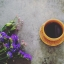 ชาดำ ชงง่าย thumbnail 2