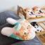 รองเท้าใส่เดินในบ้าน รองเท้าแตะในบ้าน รูปน้องเหมียวน่ารัก (Winter Lovely Cartoon Animals Slippers) thumbnail 5