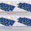 ที่นอนเด็กอนุบาล โทนสีฟ้า สีน้ำเงิน thumbnail 1
