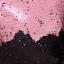กระเป๋า Mermaid Sequin Chain Strap Crossbody Bag - Pink/Black(สีชมพู/สีดำ) thumbnail 3
