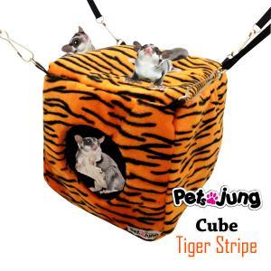 PJ-CUB001-ORTG PetsJunG - Cubes Tiger Stripe ลูกเต๋า (ตะขอบีบ)