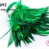 ขนนกก้าน สีเขียว (50กรัม)