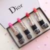 Dior 4 Colors Lipstick Set เซ็ตลิปสติก 4 สี จากดิออร์ (มิลเลอร์) ราคาปลีก 199 บาท / ราคาส่ง 159.20 บาท