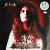 Sodom - official bootleg the witchhunter decade * New