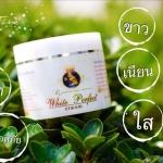 Queen White Perfect Cream โสมควีนไวท์ ราคาปลีก 150 บาท / ราคาส่ง 120 บาท
