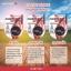 Cherry Kiss Sunscreen (C-kiss) กันแดดซีคิส (แพ็คเกจใหม่) ราคาปลีก 160 บาท / ราคาส่ง 128 บาท thumbnail 3
