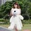 ตุ๊กตาหมียิ้ม ตุ๊กตาตัวใหญ่ สีขาว ขนาด 1.2 เมตร thumbnail 1