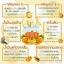 สบู่วิตามินส้มใส SOMSAI Natural Vitamin Liquid Soap (ขวดเล็ก) ราคาปลีก 180 บาท / ราคาส่ง 144 บาท thumbnail 4