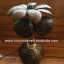 Coconut Shell Lamp (โคมไฟต้นมะพร้าว โคม 2 ลูก) thumbnail 4