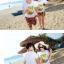 เสื้อคู่รัก ชุดคู่รักเที่ยวทะเลชาย +หญิง เสื้อยืดสีขาวลายต้นมะพร้าวลอยน้ำ กางเกงขาสั้นลายพระอาทิตย์โทนสีส้ม +พร้อมส่ง+ thumbnail 6