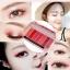 HOLD LIVE Earth Color Eye Shadow Palette พาเลทอายแชโดว์ 8 ช่อง ราคาปลีก 150 บาท / ราคาส่ง 120 บาท thumbnail 7