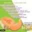 Melon Slim by veena เมล่อน สลิม ลดน้ำหนัก+ดีท็อกซ์ ราคาปลีก 120 บาท / ราคาส่ง 96 บาท thumbnail 6