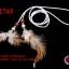 เชือกหนังชามุดสีขาวพร้อมขนนก ความยาวของเชือก 1 เมตร 10 เซน (1เส้น) thumbnail 1